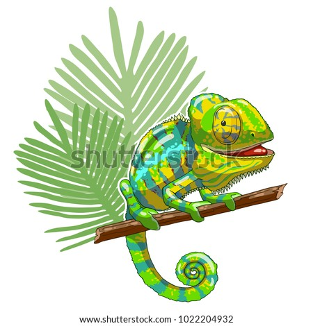 green cartoon chameleon is