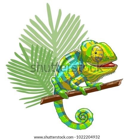 green cartoon chameleon is