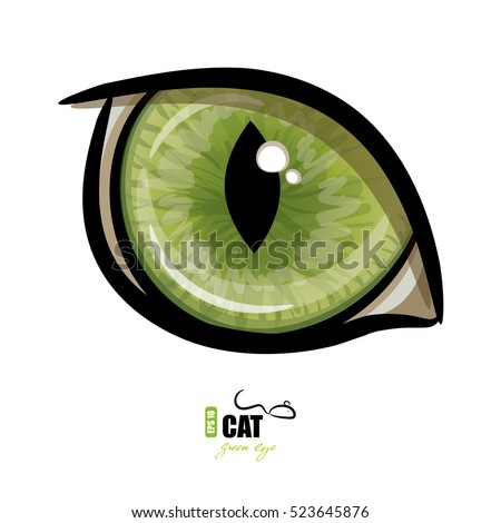 green cat's eye  isolated on