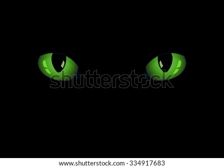 green cat's eyes on the dark
