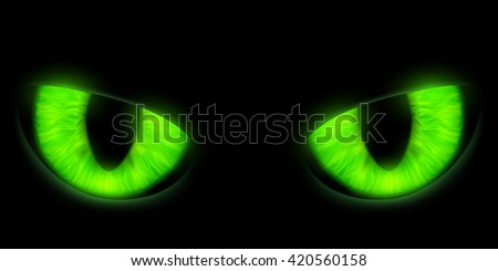 green cats eyes isolated on a