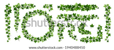 Green climbing ivy creeper branches isolated on white background. Hedera vine frames and borders, botanical design element. Vector illustration of hanging or wall creeping ivy plants Foto stock ©