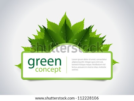 Green concept design, fresh leafs and water dorps. Vector illustration.