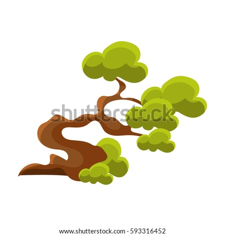 green crooked tree bonsai
