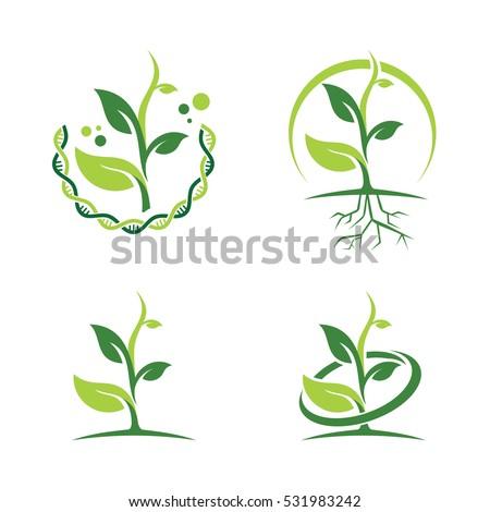 green dna ecology leaf plant