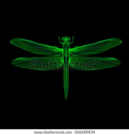green dragonfly 3d hologram x