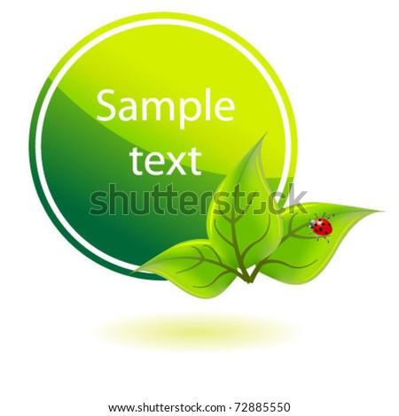green eco  banner