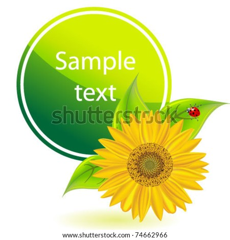 Green eco banner with sunflower
