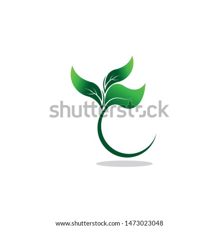 Green eco labels concept with leaves, vector illustration