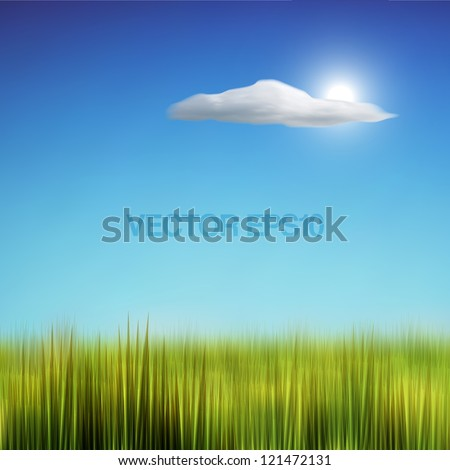 Green Field Grass and Blue Sky Vector Background