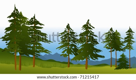 Green forest - stock vector