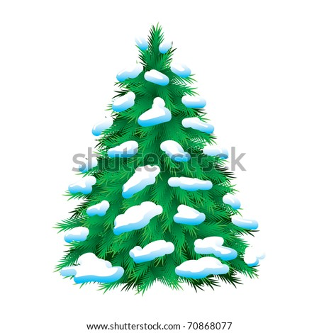 green fur tree covered with