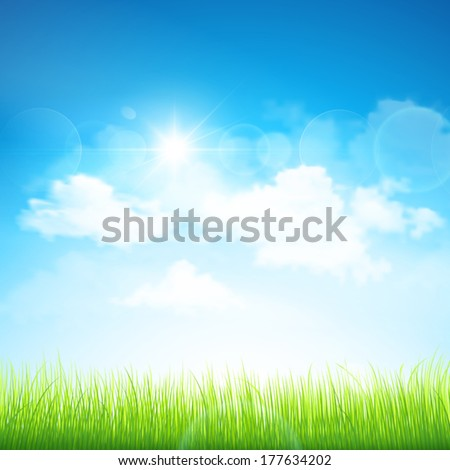 Green grass and blue sky. Vector