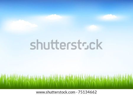 Green Grass And Blue Sky, Vector Illustration