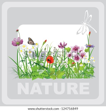Green grass and flowers, landscape natural, banner in vector art