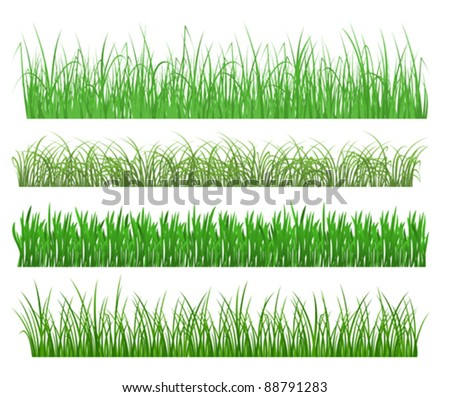 Green grass and plant elements isolated on white background. Jpeg version also available in gallery