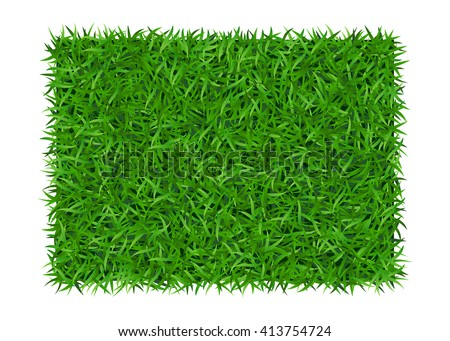 green grass background lawn
