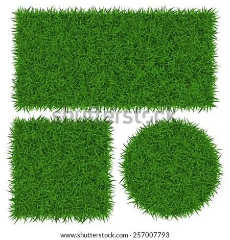 green grass banners  vector
