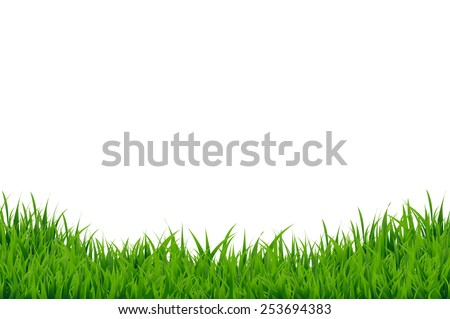 green grass border  vector