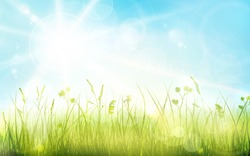 Green grass border with spring sun and blue sky. Light effects and blurred light dots  give it a dreamy and soft feeling for the spring, easter season.