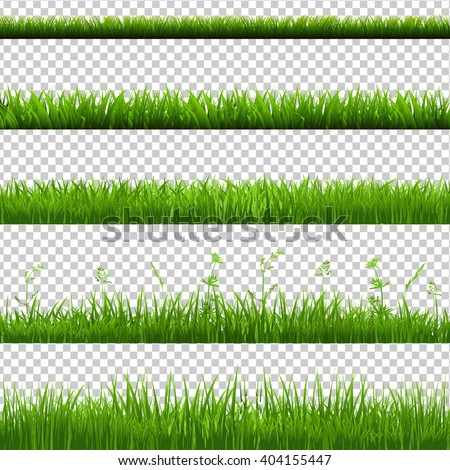 Green Grass Borders Big Set, Isolated on Transparent Background, Vector Illustration