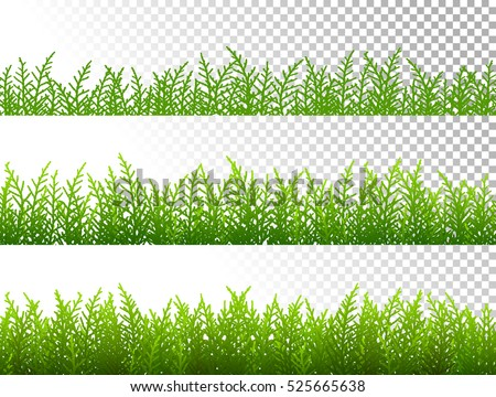 Green grass borders set on transparent background vector