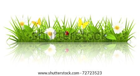 green grass  10eps