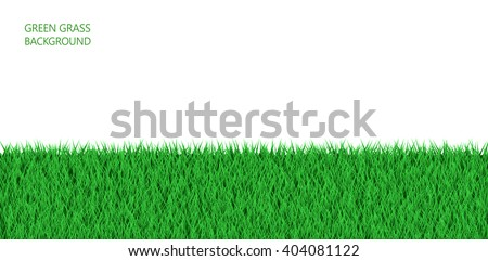 green grass field background