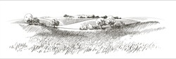 Green grass field on small hills. Meadow, alkali, lye, grassland, pommel, lea, pasturage,  farm. Rural scenery landscape panorama of countryside pastures. Vector sketch illustration