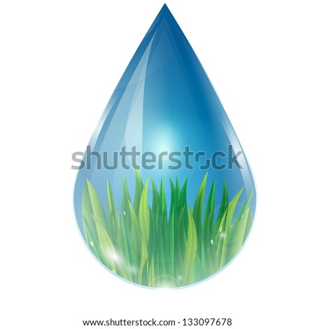 green grass in a drop of water