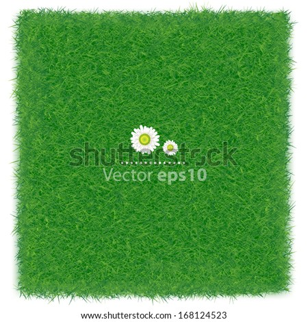 Green grass realistic textured background isolate white background, vector illustration
