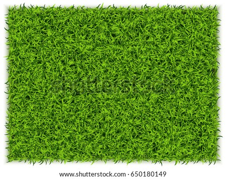 Green Grass Rectangle Background. Eco Home Concept. 3d Vector Illustration