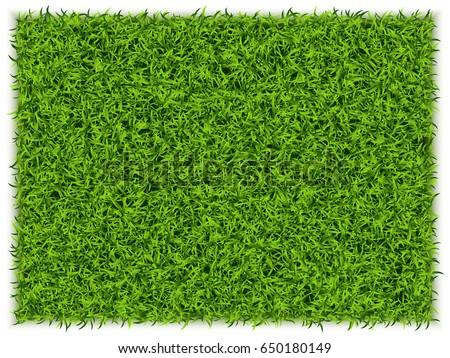 green grass rectangle