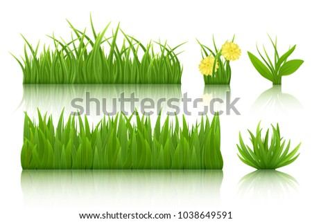 Green grass set. 3d vector realistic image