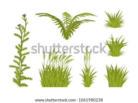 Green grass set. Lawns and pasture short plants, growing meadow wild or garden cultivated, cattle food. Urban landscape design, environment and ecology concept. Vector flat style cartoon illustration