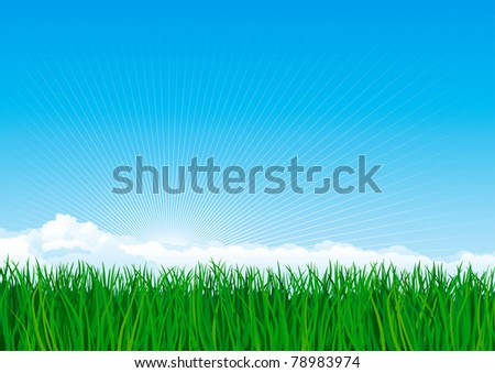 Green grass. Vector background of spring landscape of green grass on blue sky with sun beames and clouds.