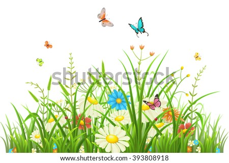 green grass with flowers and