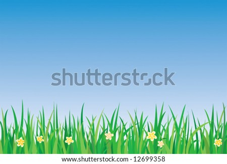 Green grass with flowers blooming
