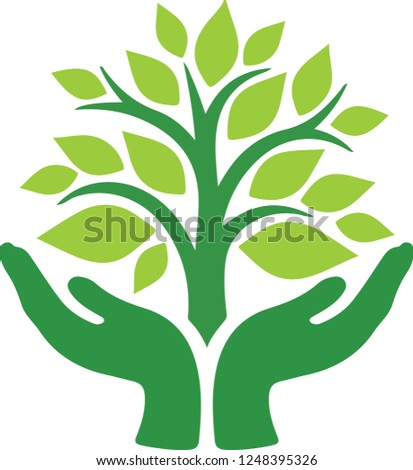 green large tree between human hand shows save environment and forest