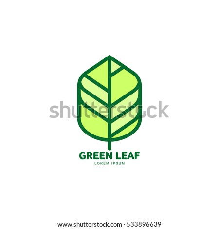Green leaf growing up logo template, vector illustration isolated on white background. Graphic green leaf logotype template with text below, environment protection, nature, growth, development concept