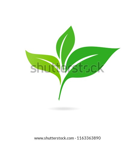 Green Leaf Icon Vector Illustrations. Ecology icon. Eco-icon.