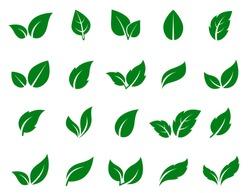 green leaf icons set on white background