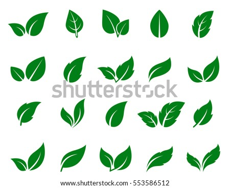 green leaf icons set on white