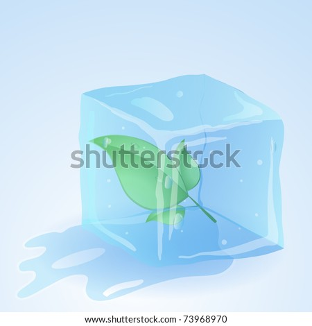 Green leaf in ice cube. Vector.