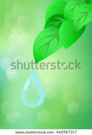 green leaf with water drops on
