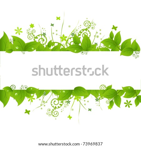 green leafs and grass  isolated