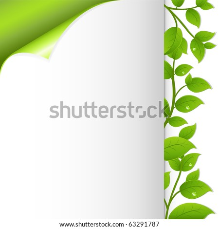 Green Leaves And Paper, Vector Illustration