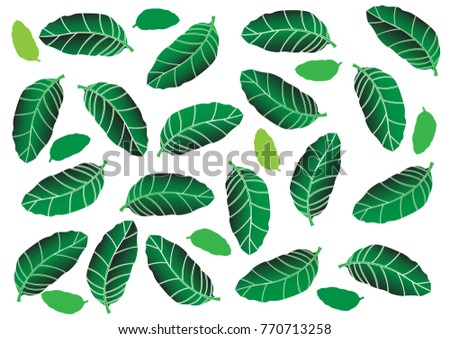 Green leaves background - Illustration Painted Image, Springtime, Textile, Season, Leaf,Plant, Textile, wallpaper,   #770713258