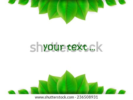 green leaves background with