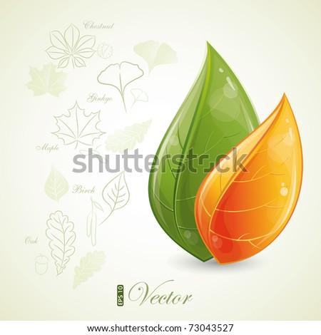 Green leaves design, eps-10